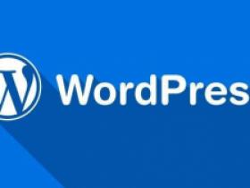 WordPress启用/禁用开发者模式